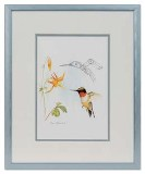 Framed Art Card, Hummingbird