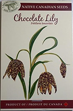 Chocolate Lilly, Seeds